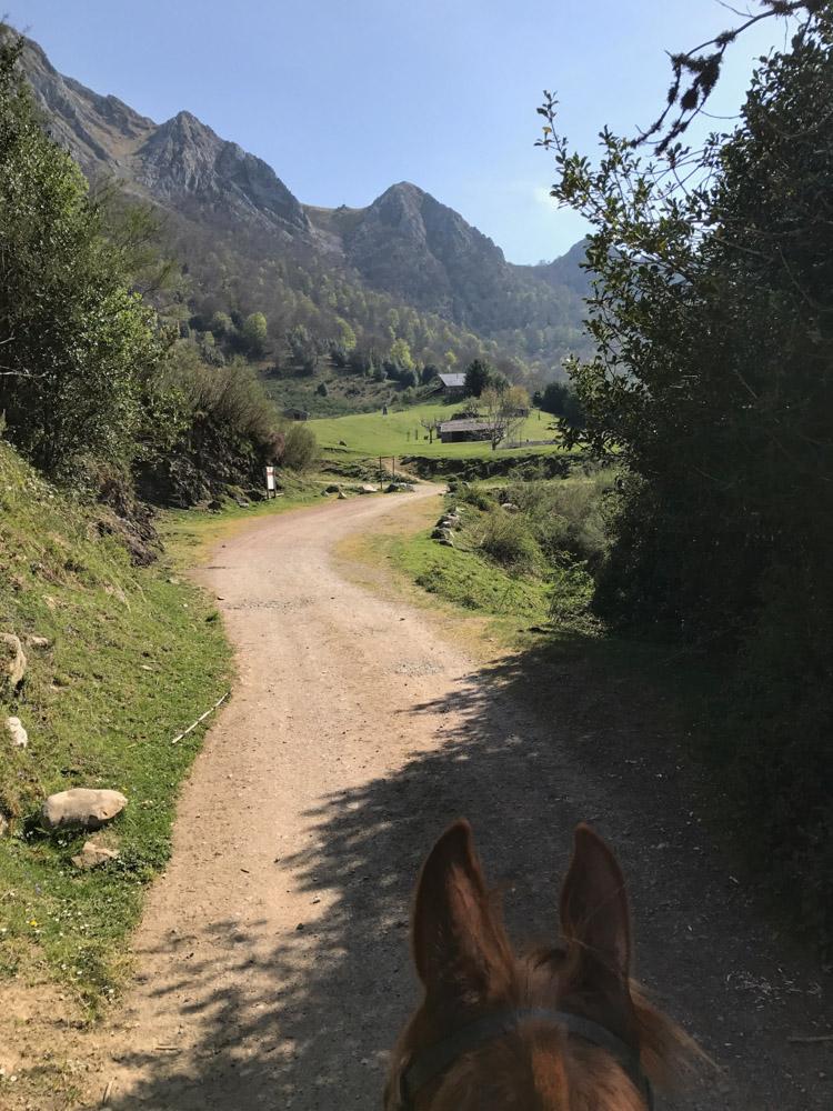 cabalgando-hacia-brañagallones, mar vidal, mavi vidal, persistencia o cambio, ruta, montaña, refugio, asturias, caballos