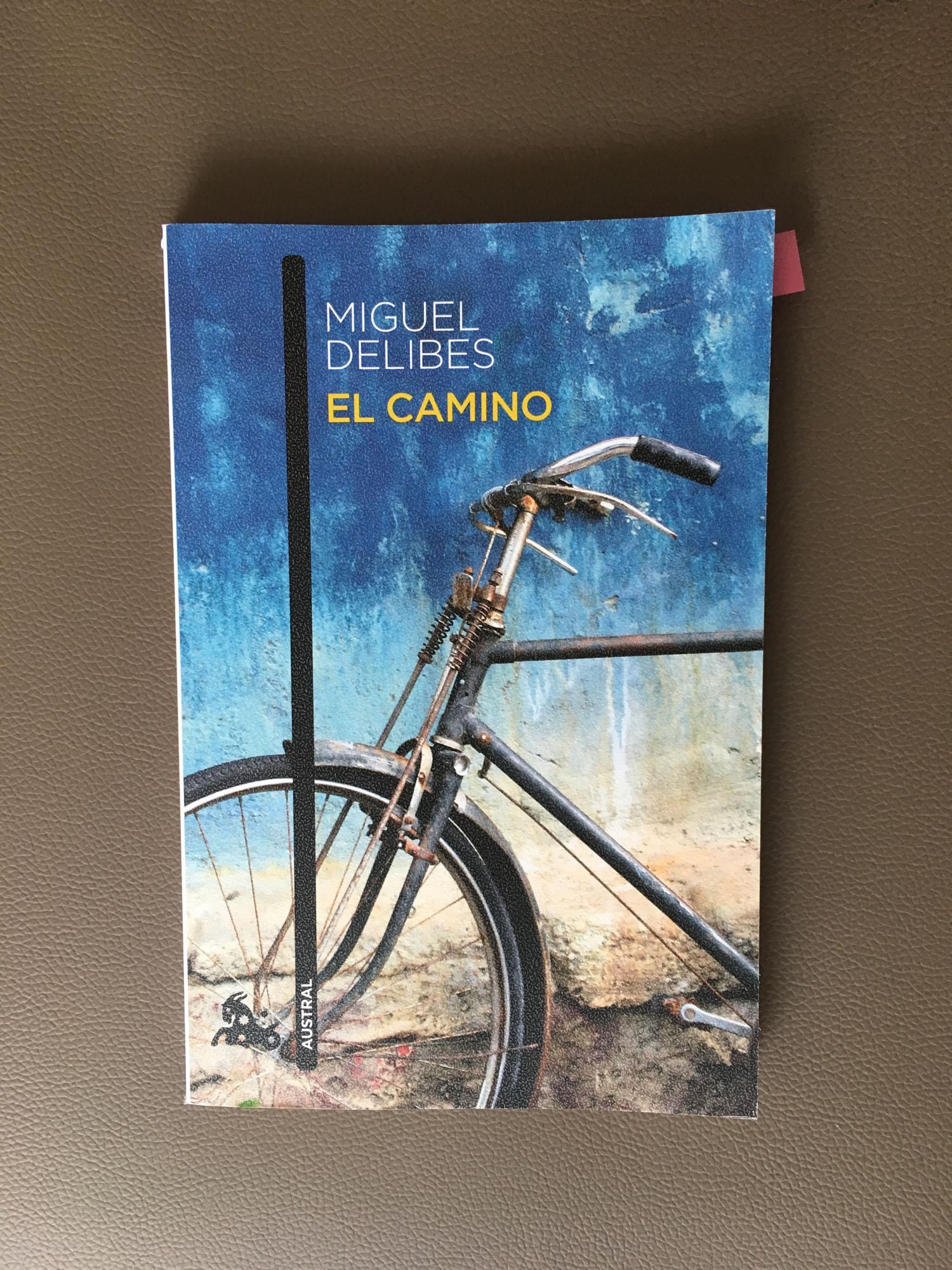 Libro de la semana lectura leer literatura delibes el camino