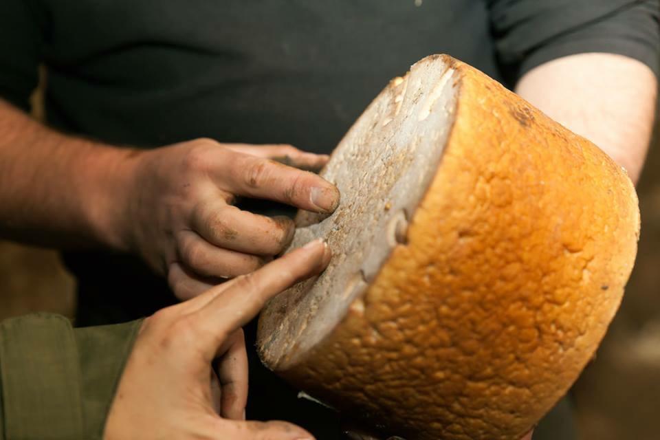 picos de europa, asturias, queso, queso gamoneu, d'origo astur