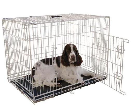 18-cosas-que-necesitas-si-vas-a-tener-un-perro, persistencia o cambio, mar vidal, perros, animales, menaje, acicalado, peluquería canina