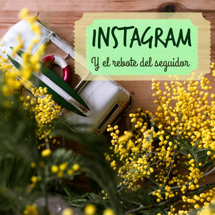 Instagram-y-el-rebote-de-seguidor, mar vidal, persistencia o cambio, truck, furgoneta, surf, viaje, flores, mimosas, instagram