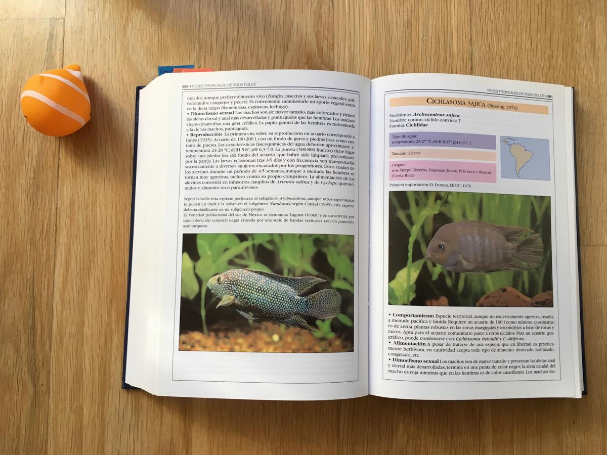 peces-tropicales-de-agua-dulce, persistencia o cambio, mar vidal, mi libro de la semana, lectura, literatura, consulta, peces, acuariofilia