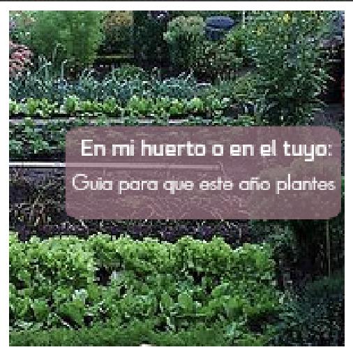en-mi-huerto-o-en-el-tuyo-guia-para-que-este-año-plantes, mar Vidal, la casa de mar orden y Deco, la casa de mar, LCDM, orden, organización, huerto, jardín, jardinería